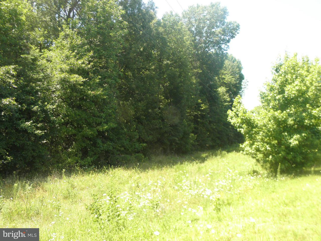 Land for Sale at Marsh Road Goldvein, Virginia 22720 United States