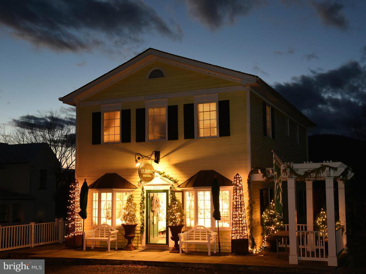 商用 为 销售 在 307 MAIN Street 307 MAIN Street Washington, 弗吉尼亚州 22747 美国