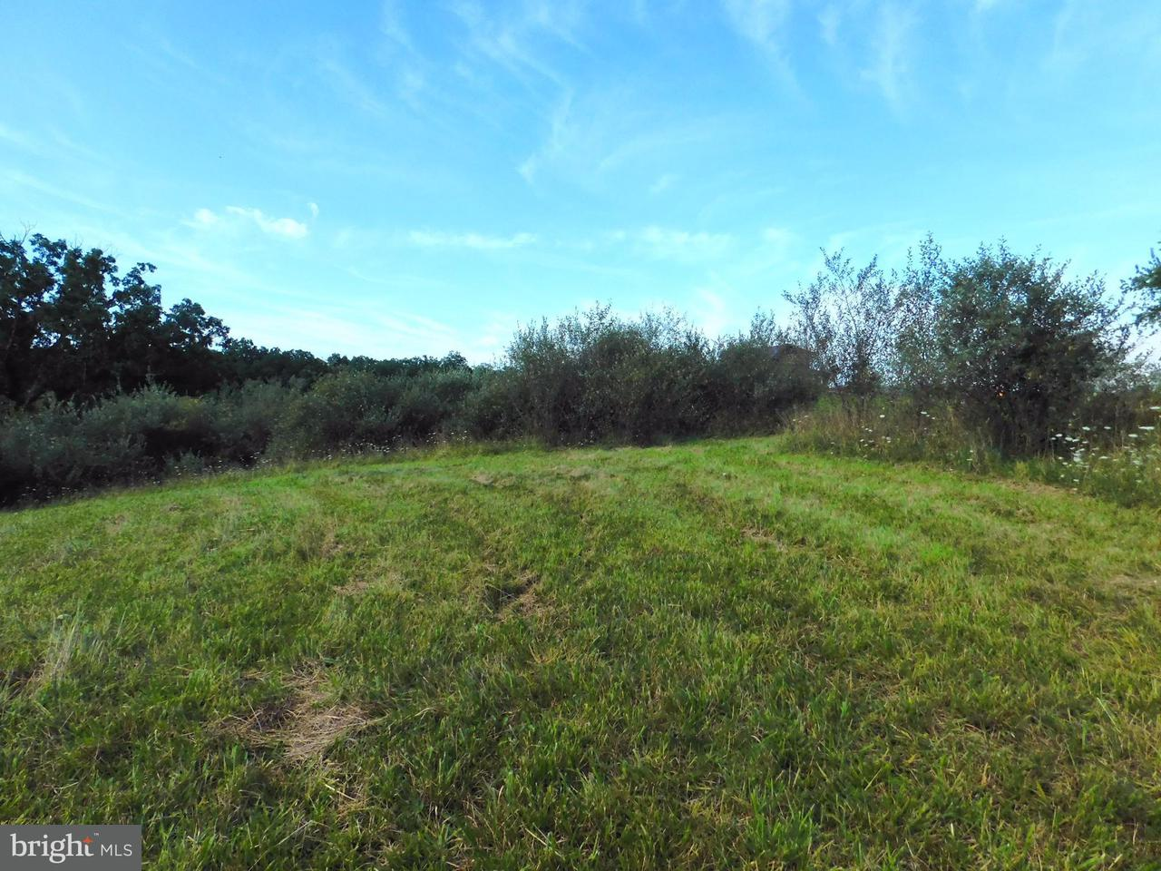 Land for Sale at Sea Biscuit Dr Levels, West Virginia 25431 United States