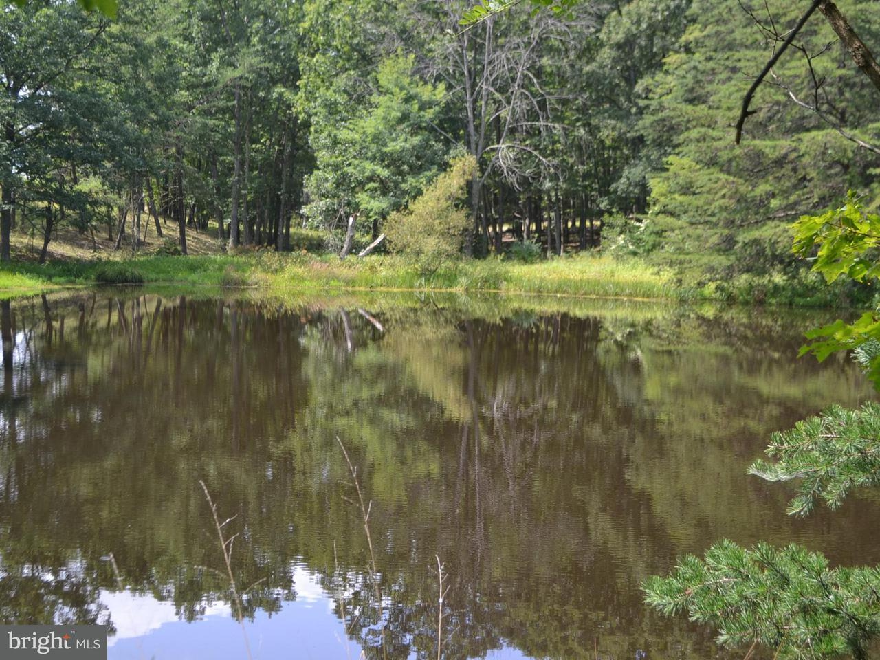 Additional photo for property listing at 5 DON MCCAULEY 5 DON MCCAULEY Romney, West Virginia 26757 Estados Unidos