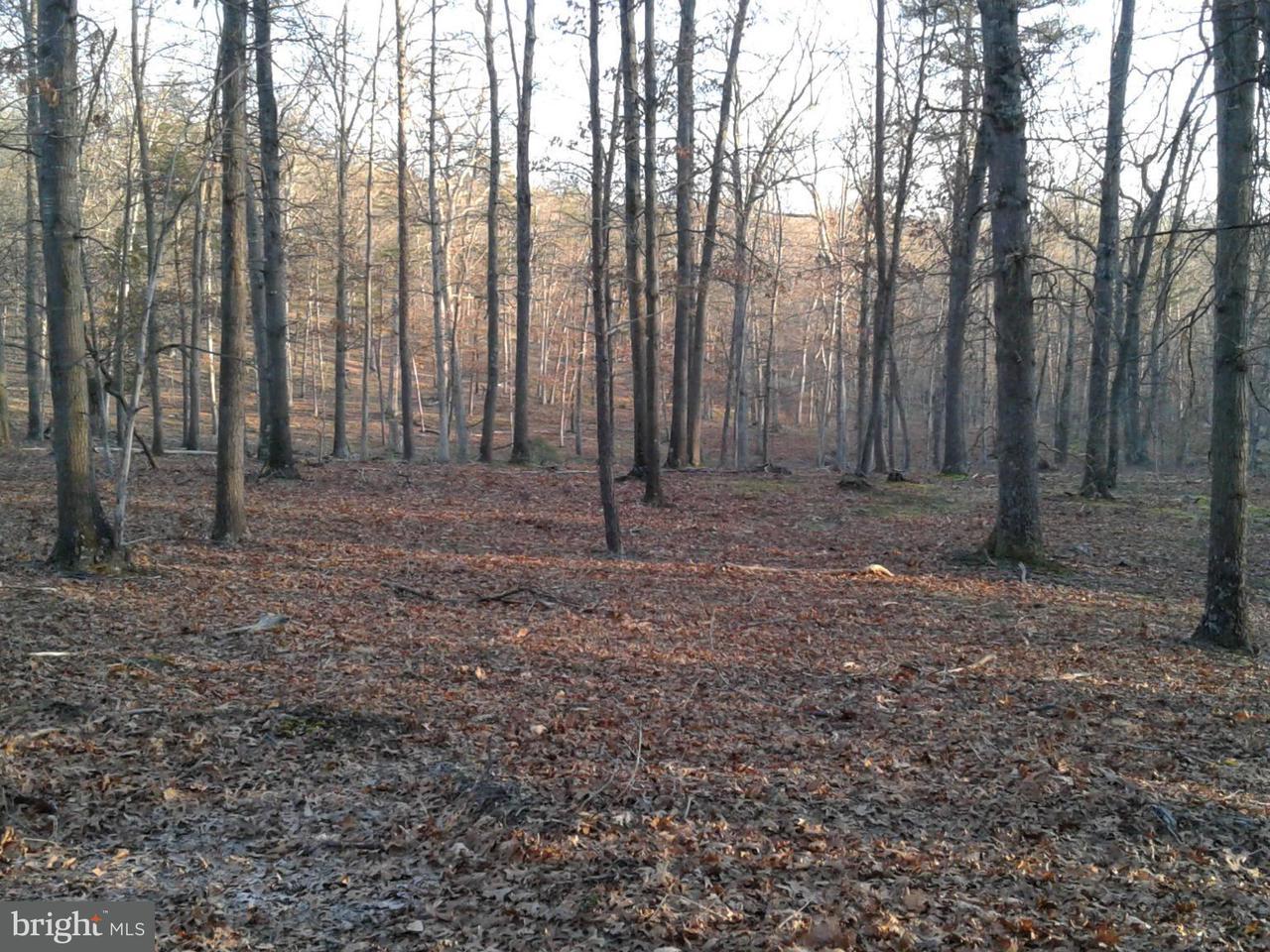 土地 為 出售 在 BEAVER RUN Road BEAVER RUN Road Burlington, 西佛吉尼亞州 26710 美國