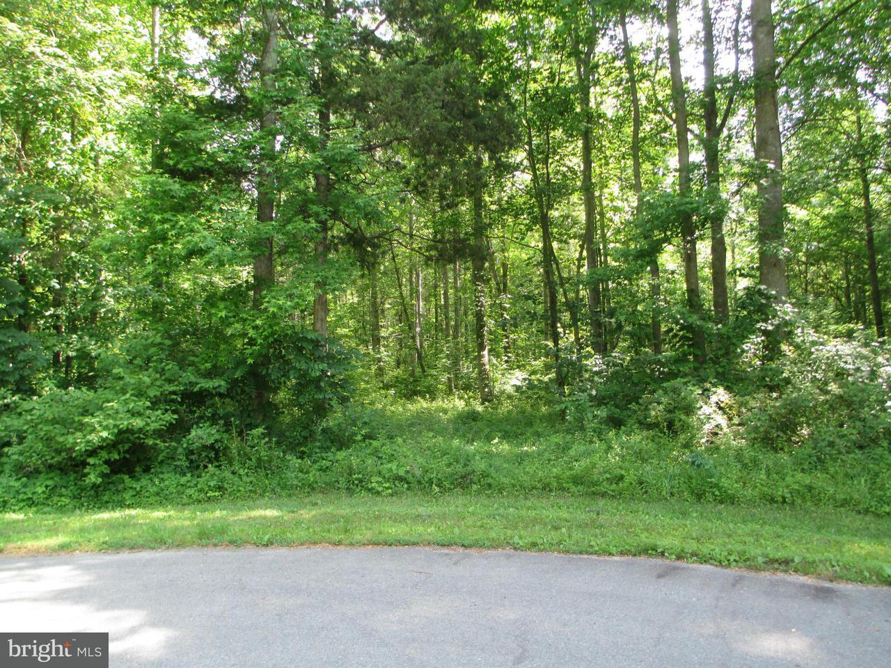Land for Sale at Slasher Pl Mineral, Virginia 23117 United States