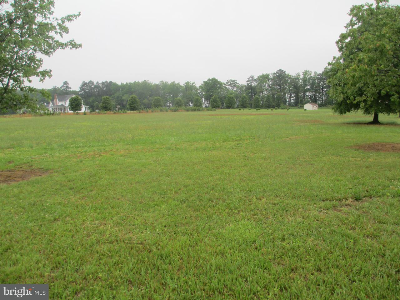 Land for Sale at Woodland Dr Rhodesdale, 21659 United States