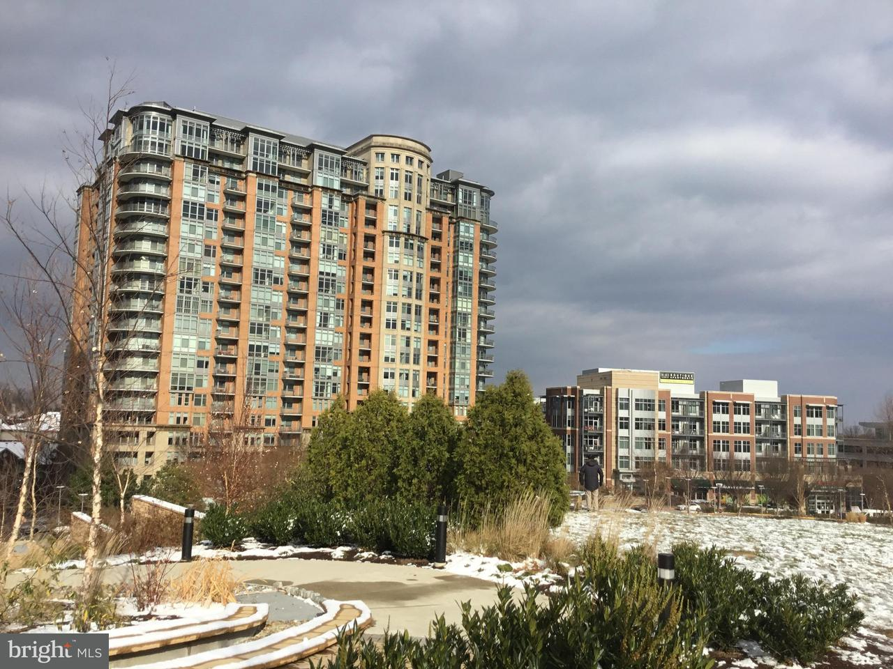 Townhouse for Sale at 8220 CRESTWOOD HEIGHTS DR #712 8220 CRESTWOOD HEIGHTS DR #712 McLean, Virginia 22102 United States