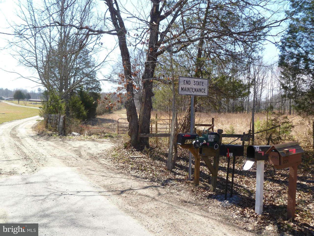 土地 のために 売買 アット Sunnybrook Farm Road Sunnybrook Farm Road Spotsylvania, バージニア 22553 アメリカ合衆国