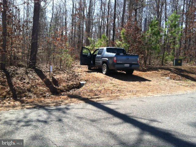 Additional photo for property listing at Not On File  Mineral, Virginia 23117 United States