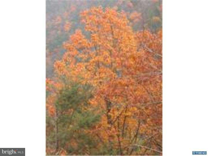 Additional photo for property listing at Lot 2 ANCHORAGE Road  Saylorsburg, Pennsylvanie 18353 États-Unis