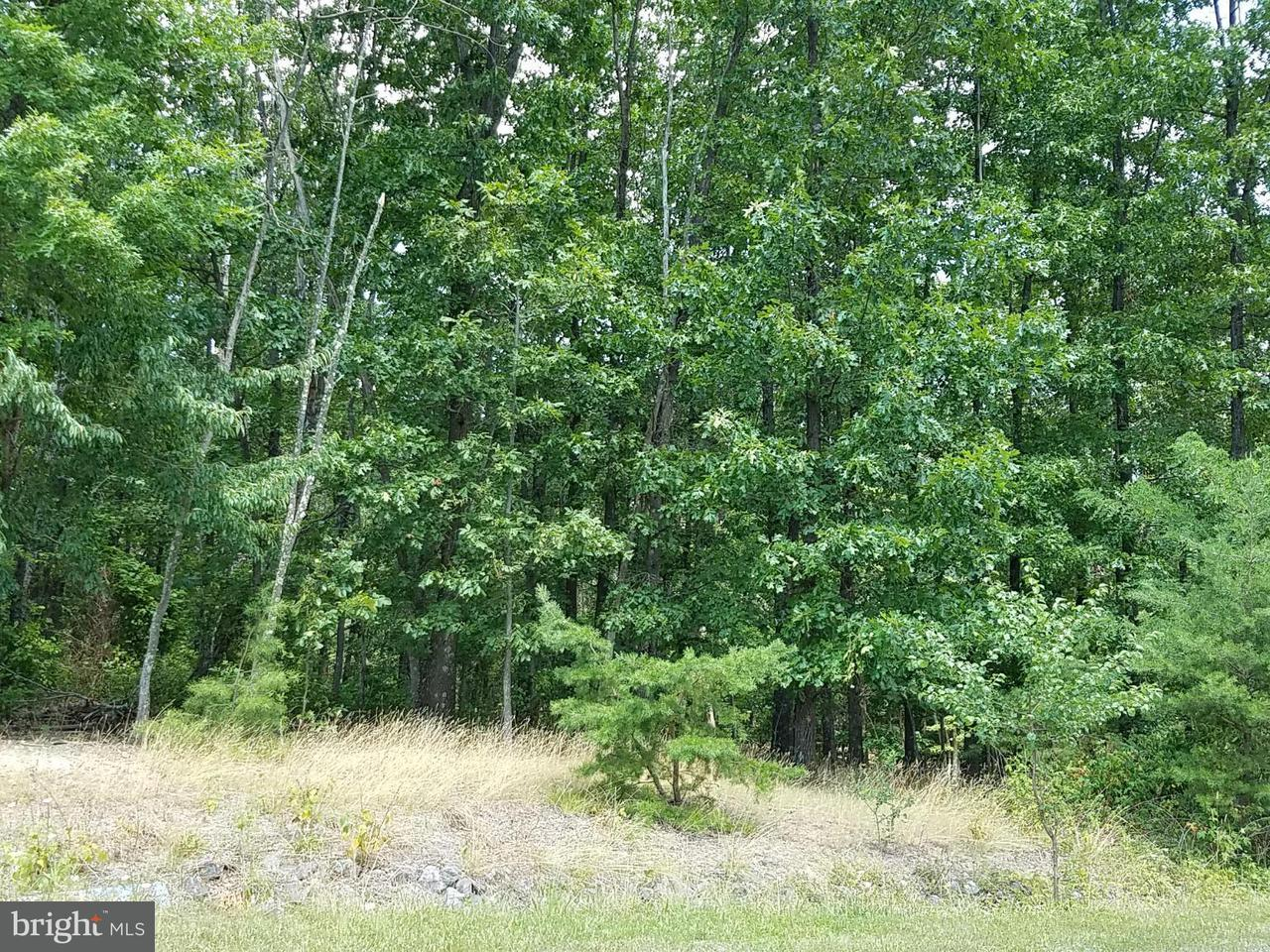 Additional photo for property listing at 11 Husk Trl  Berkeley Springs, West Virginia 25411 United States
