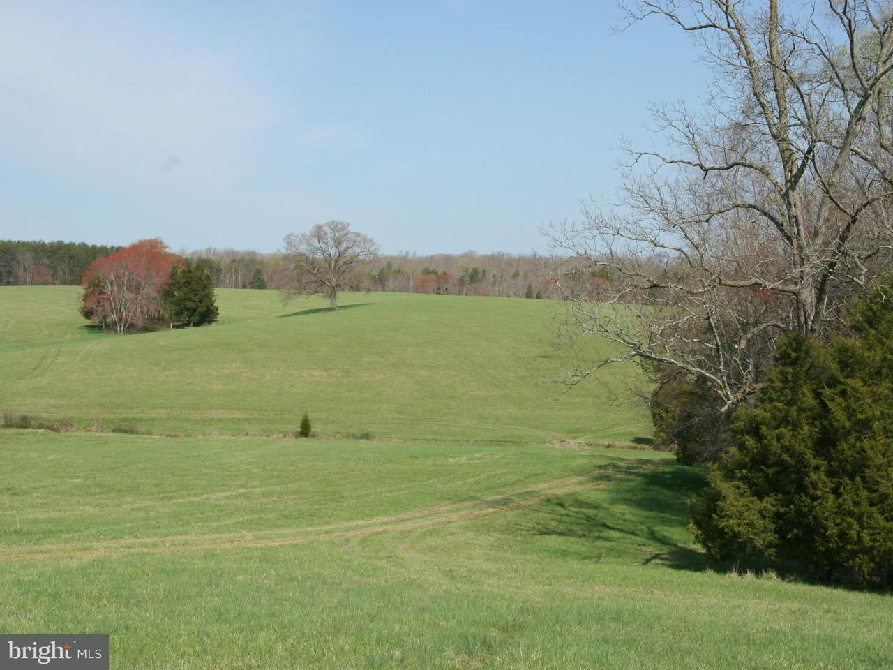 Land for Sale at VAWTER CORNER Road VAWTER CORNER Road Louisa, Virginia 23093 United States