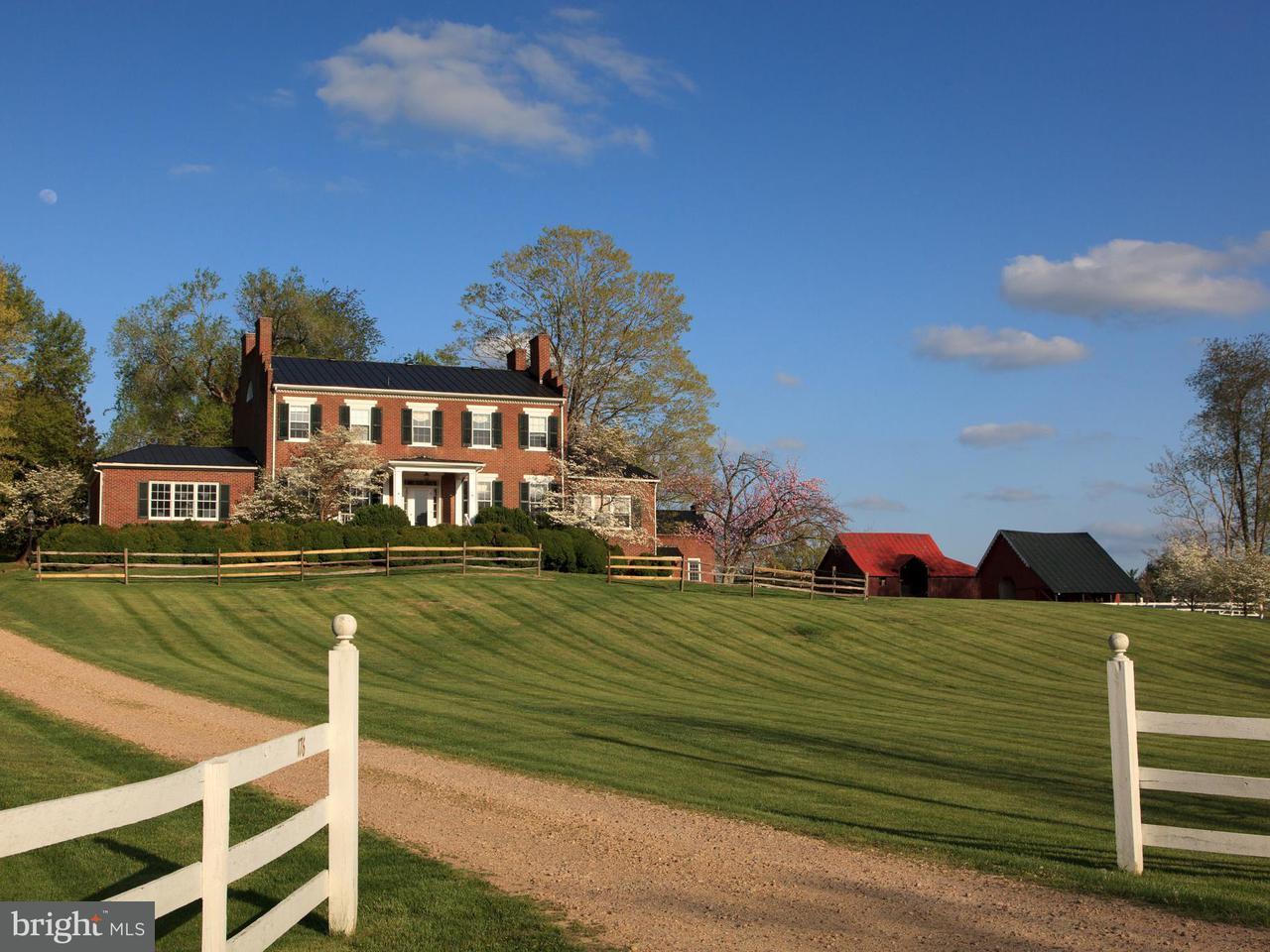 独户住宅 为 销售 在 176 MAIN Street 176 MAIN Street Washington, 弗吉尼亚州 22747 美国