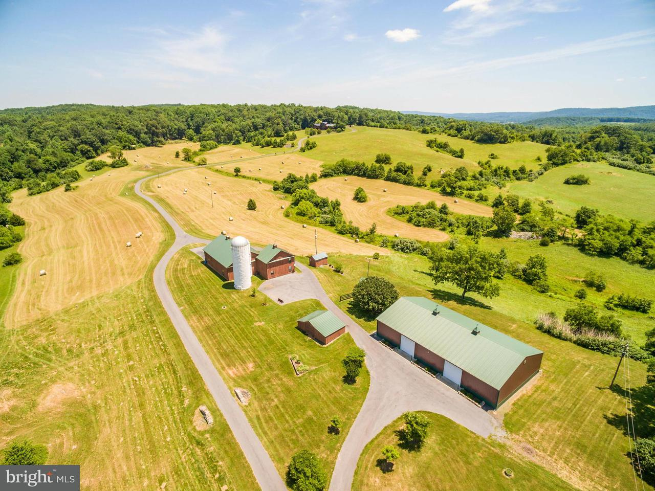 Farm for Sale at 10306 ADA Road 10306 ADA Road Marshall, Virginia 20115 United States