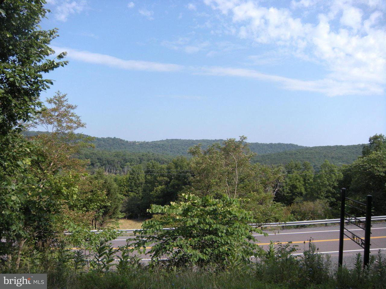 Land for Sale at 13 Horizon Ln Capon Bridge, West Virginia 26711 United States