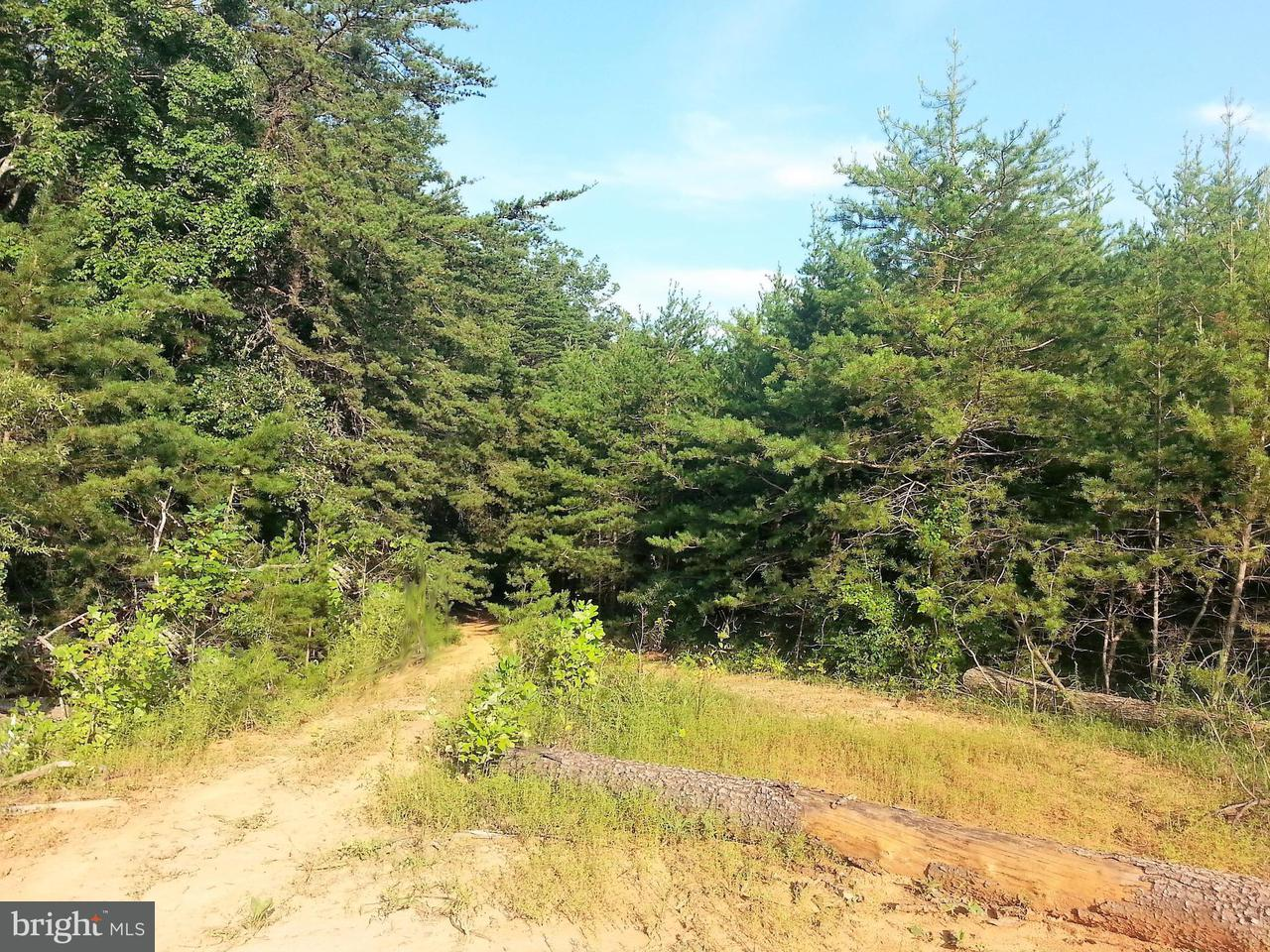 Land for Sale at 0 Old Lawyers Rd Unionville, Virginia 22567 United States