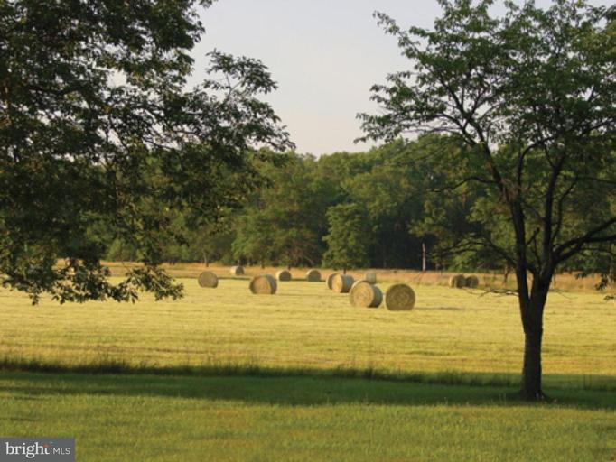 Land for Sale at RIDGESIDE Road RIDGESIDE Road Bluemont, Virginia 20135 United States