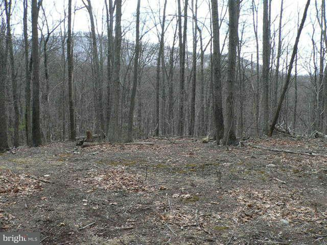 Land for Sale at 3570 Lucas Hollow Rd Stanley, Virginia 22851 United States