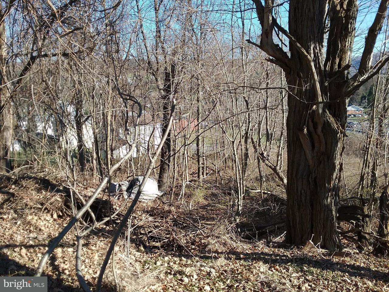 Land for Sale at Route 40 Rd Eckhart Mines, Maryland 21528 United States