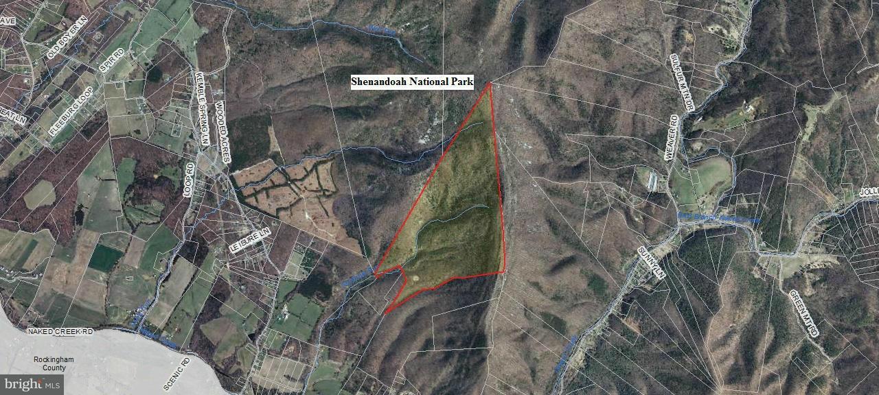 土地 為 出售 在 Naked Creek Road Naked Creek Road Shenandoah, 弗吉尼亞州 22849 美國
