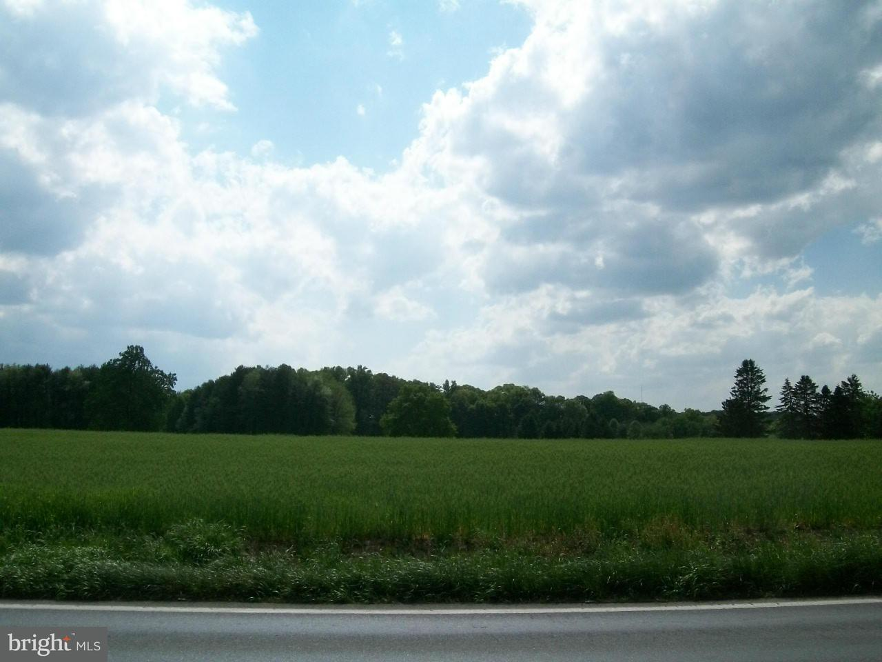 Additional photo for property listing at GREENSPRING Avenue GREENSPRING Avenue Owings Mills, Maryland 21117 Estados Unidos