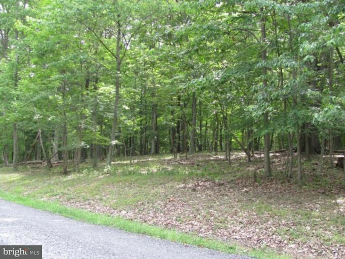 Additional photo for property listing at 4 Ravens Rock Rd  Springfield, West Virginia 26763 United States