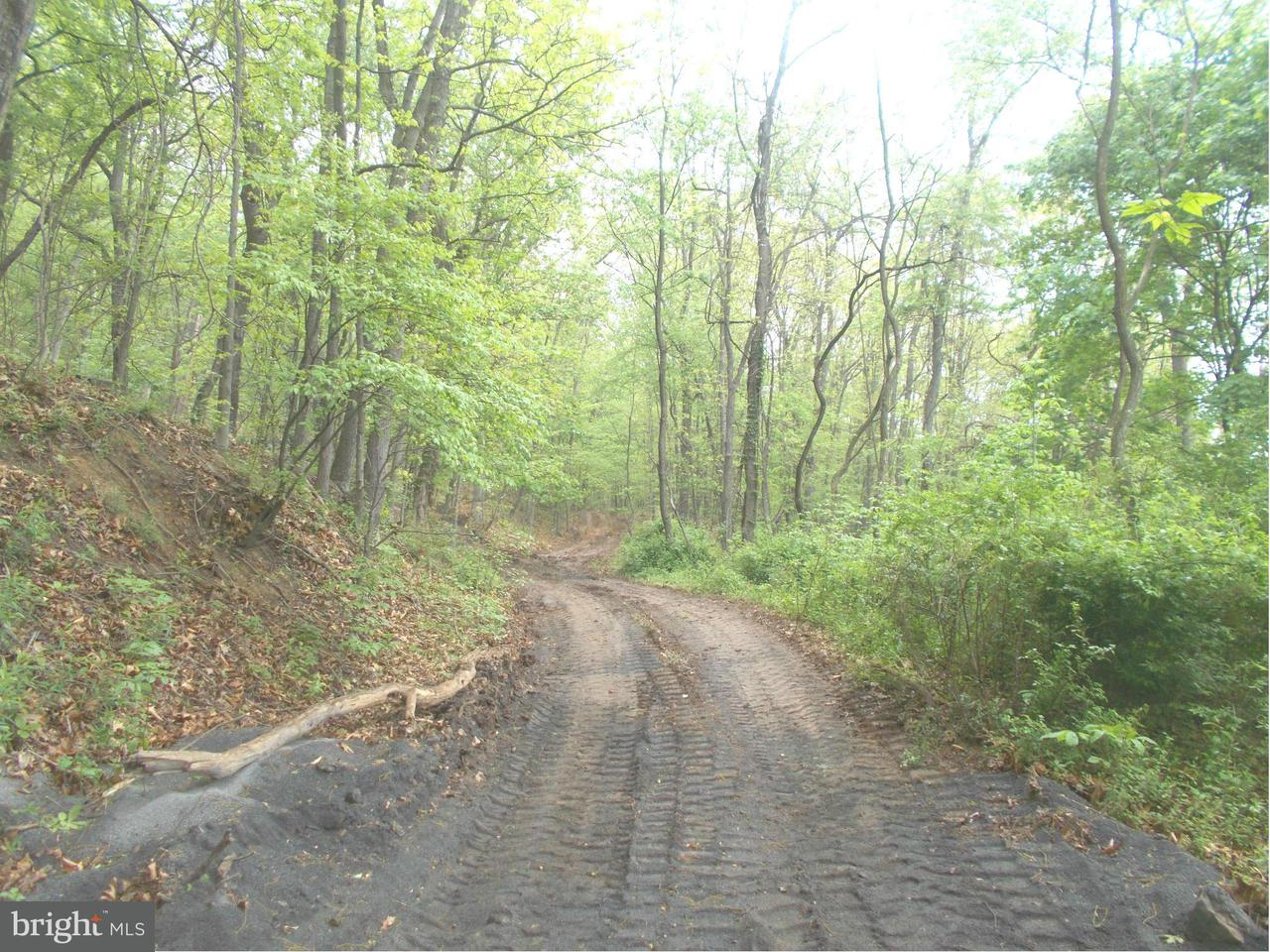 Additional photo for property listing at Route 220 NW  Cumberland, Maryland 21502 United States