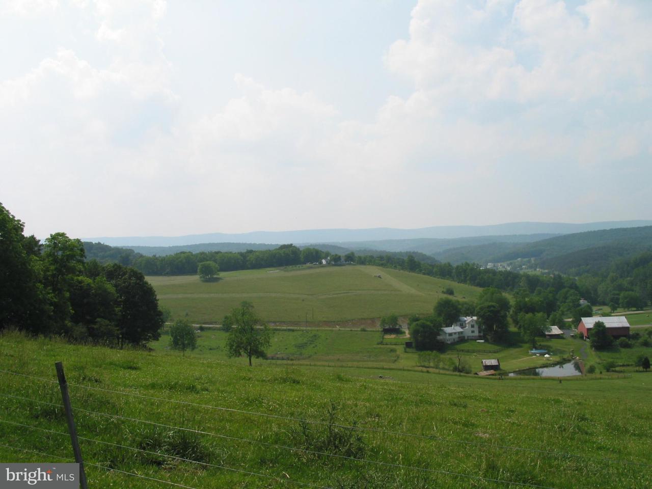 土地 為 出售 在 Senedo Road Senedo Road Mount Jackson, 弗吉尼亞州 22842 美國