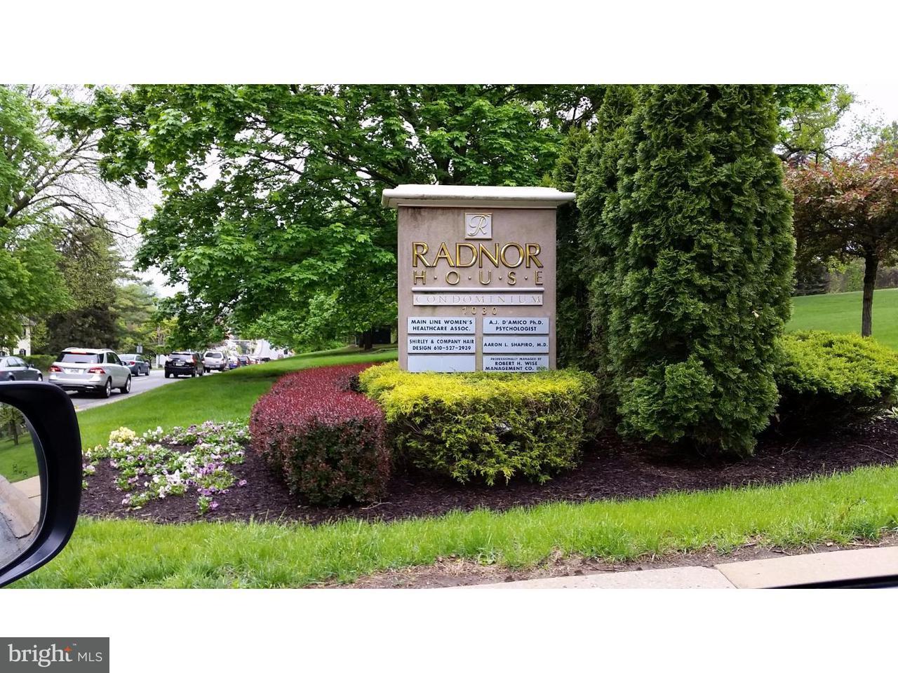 Частный односемейный дом для того Аренда на 1030 E LANCASTER AVE #214 Rosemont, Пенсильвания 19010 Соединенные Штаты