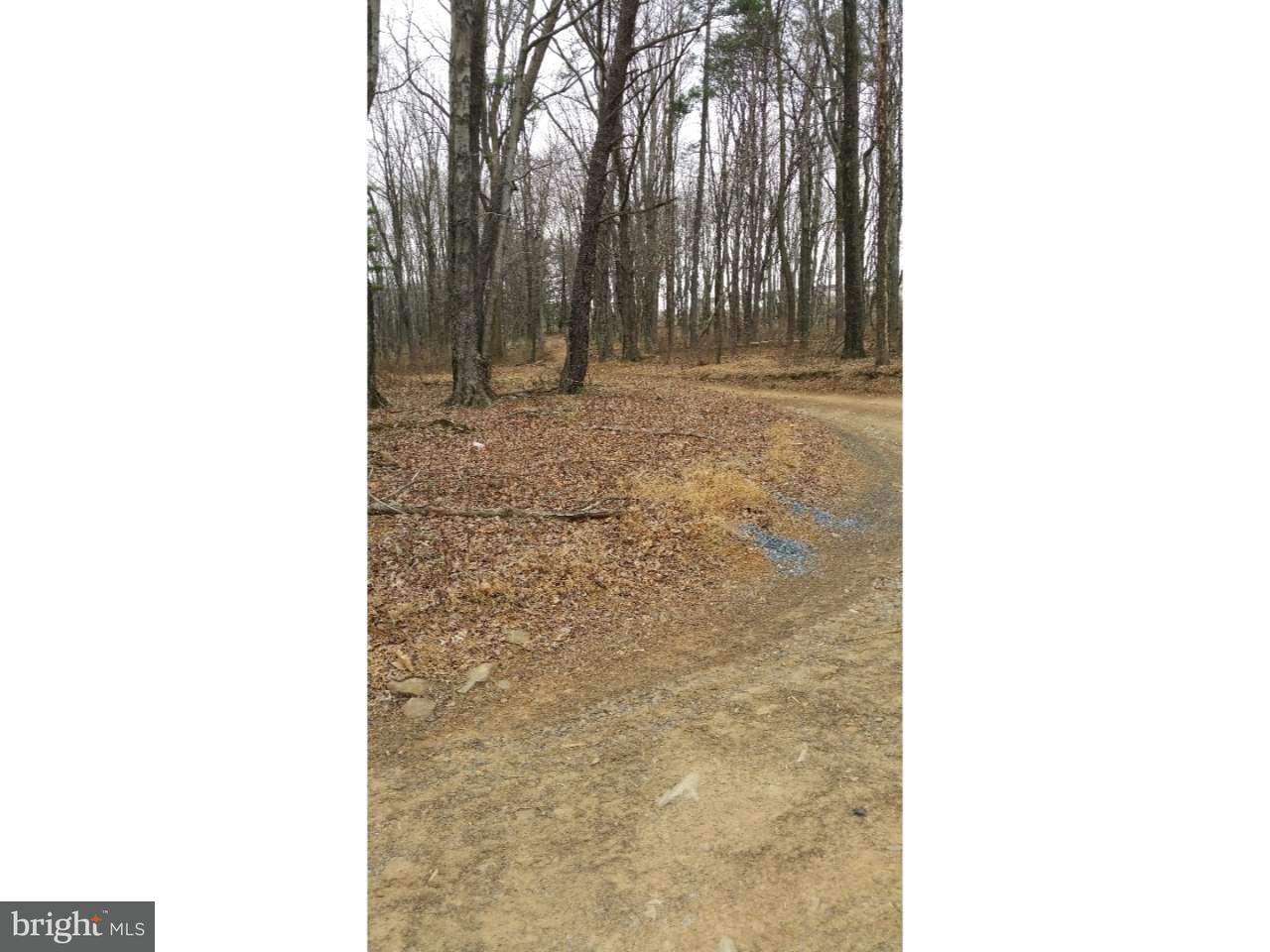Additional photo for property listing at 22 SEVEN STARS Road  Pottsville, Pennsylvanie 17901 États-Unis