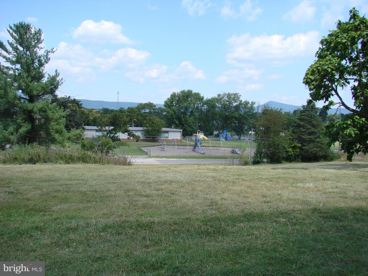 Land for Sale at 513 Third St Luray, Virginia 22835 United States