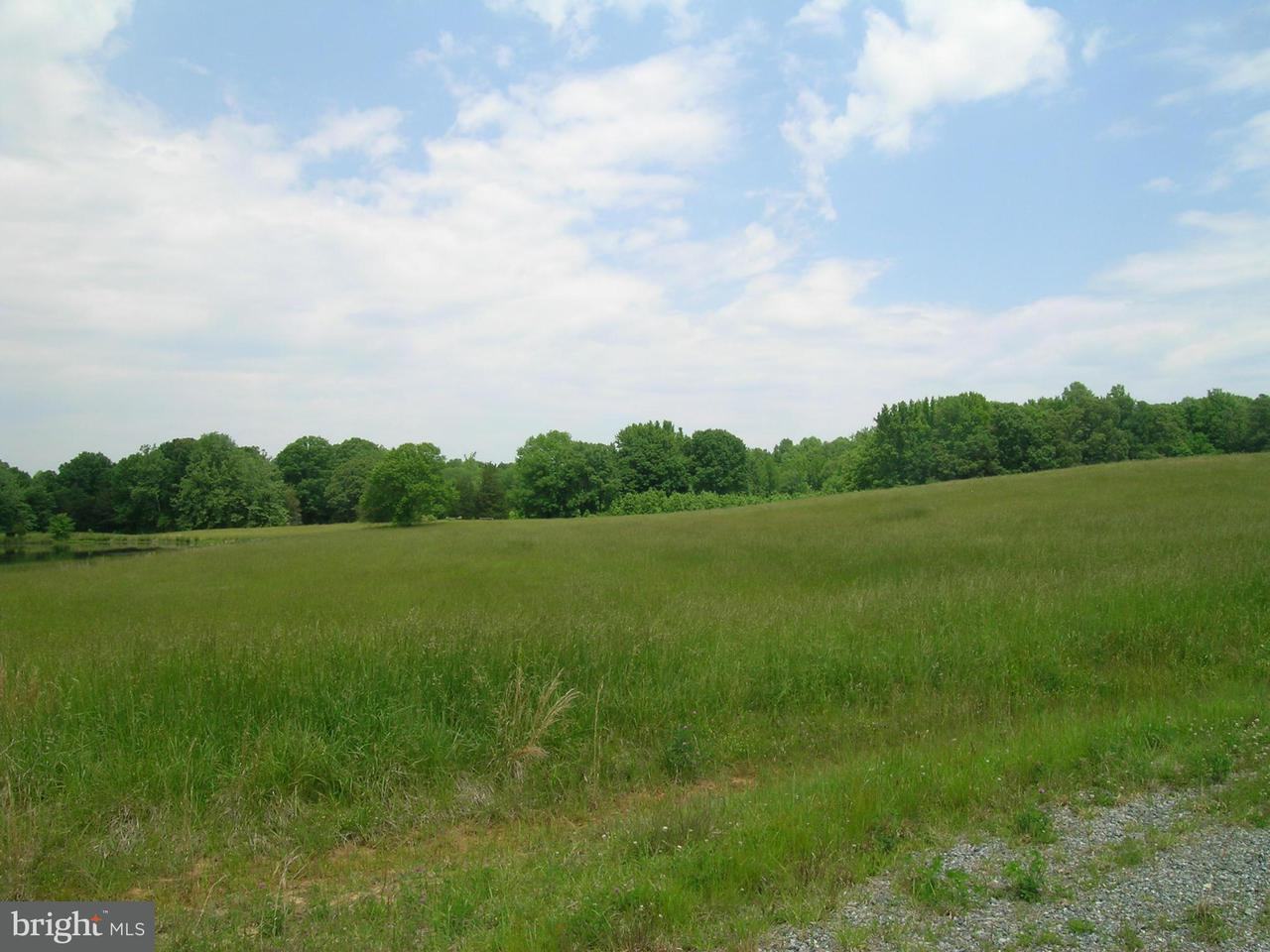 Additional photo for property listing at 4 Aeolian  Bumpass, Virginia 23024 United States