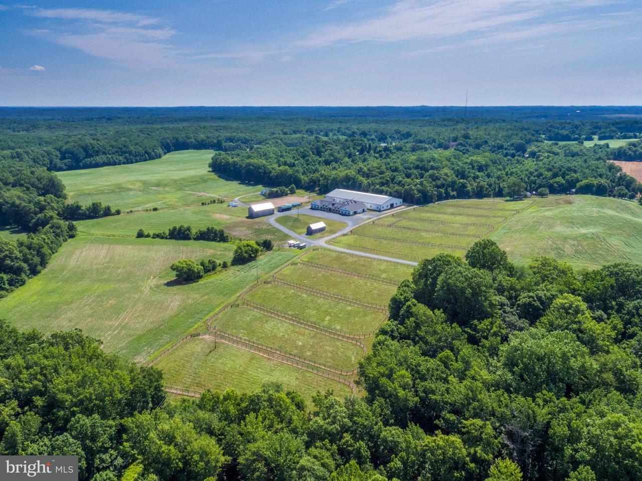 农场 为 销售 在 16900 CLAGGETT LANDING Road 16900 CLAGGETT LANDING Road 上马尔伯勒, 马里兰州 20774 美国