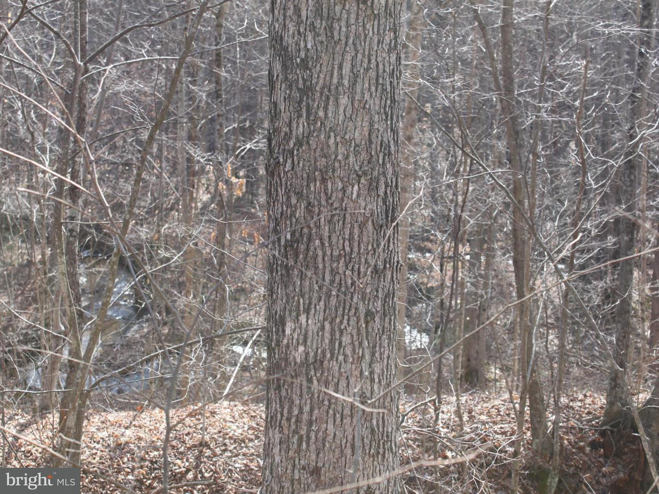 Land for Sale at Not On File Three Springs, Pennsylvania 17264 United States