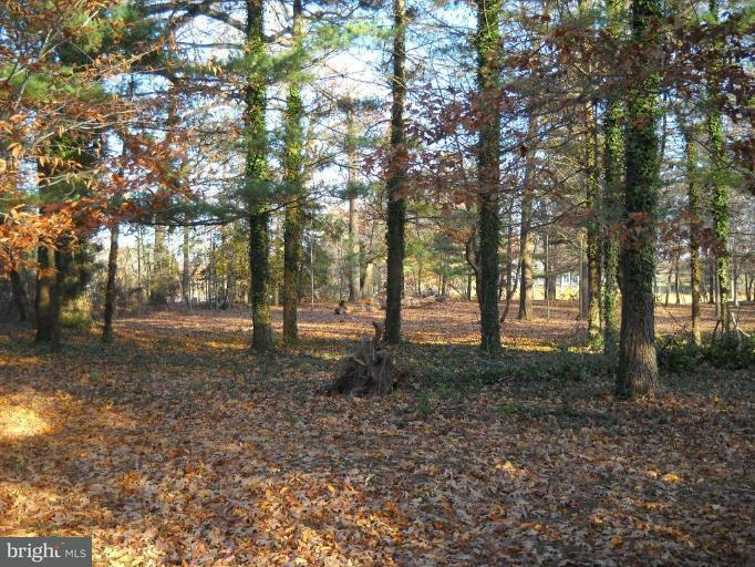 Additional photo for property listing at Lee Ter  Easton, Maryland 21601 United States