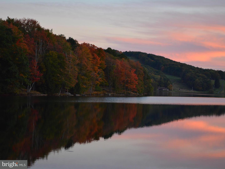 Land for Sale at 30lot Goldenrod Dr Terra Alta, West Virginia 26764 United States