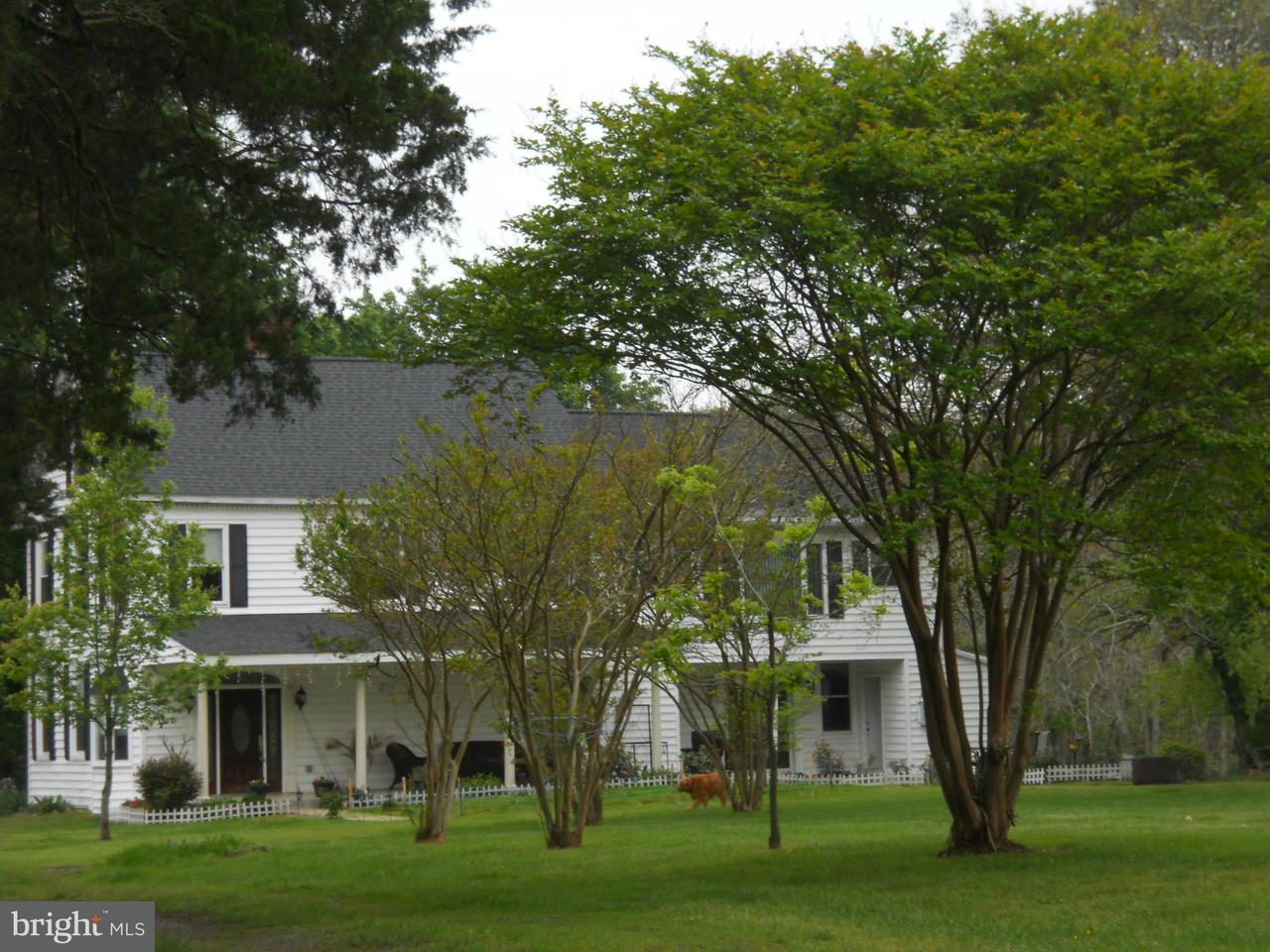 Additional photo for property listing at 3033 SUMMIT STATION Road 3033 SUMMIT STATION Road Fredericksburg, Virginia 22408 United States
