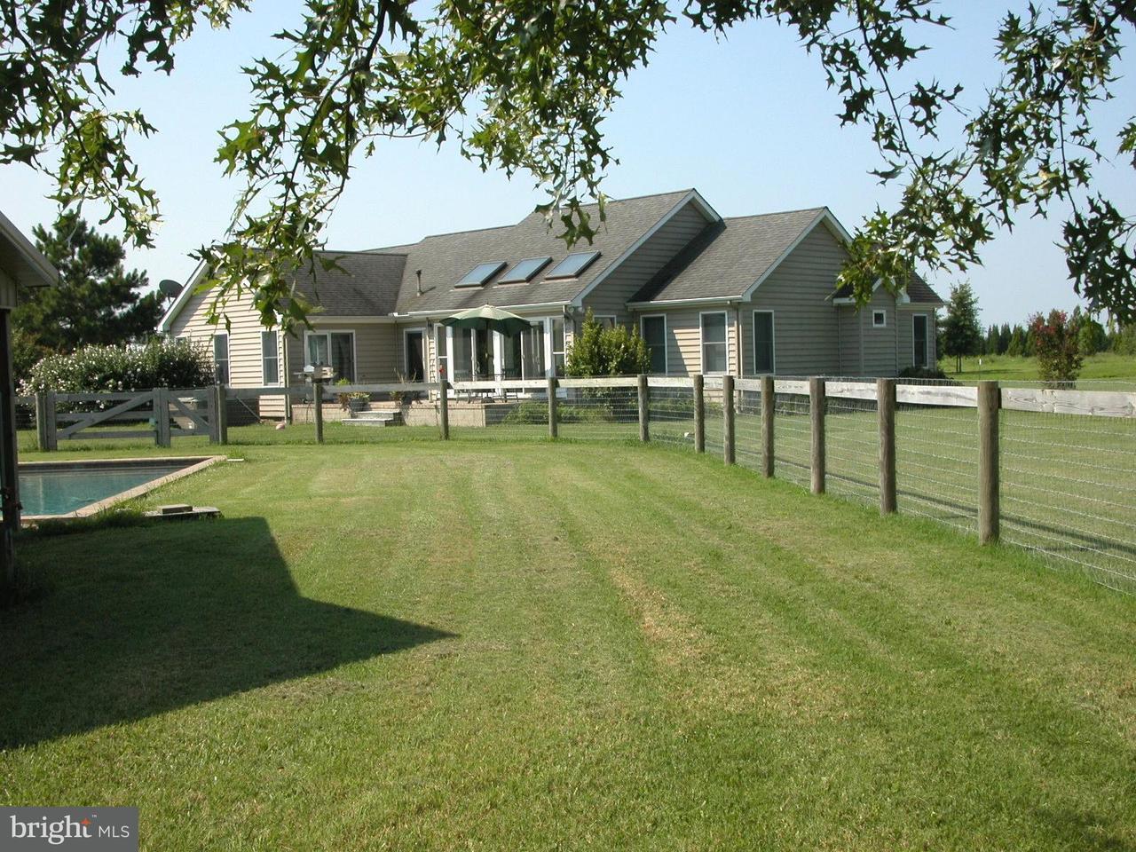 Additional photo for property listing at 3069 CHOPTANK Road 3069 CHOPTANK Road Preston, Maryland 21655 Estados Unidos