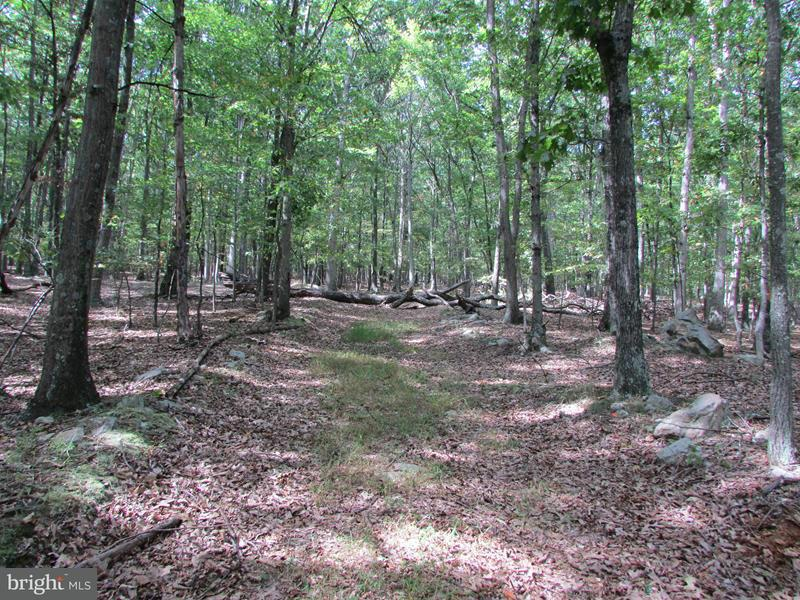 Land for Sale at 71 Owl Hollow Road Slanesville, West Virginia 25444 United States