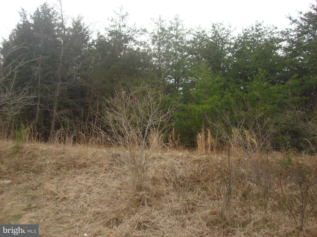 Land for Sale at 8620 Ox Rd S Fairfax Station, Virginia 22039 United States