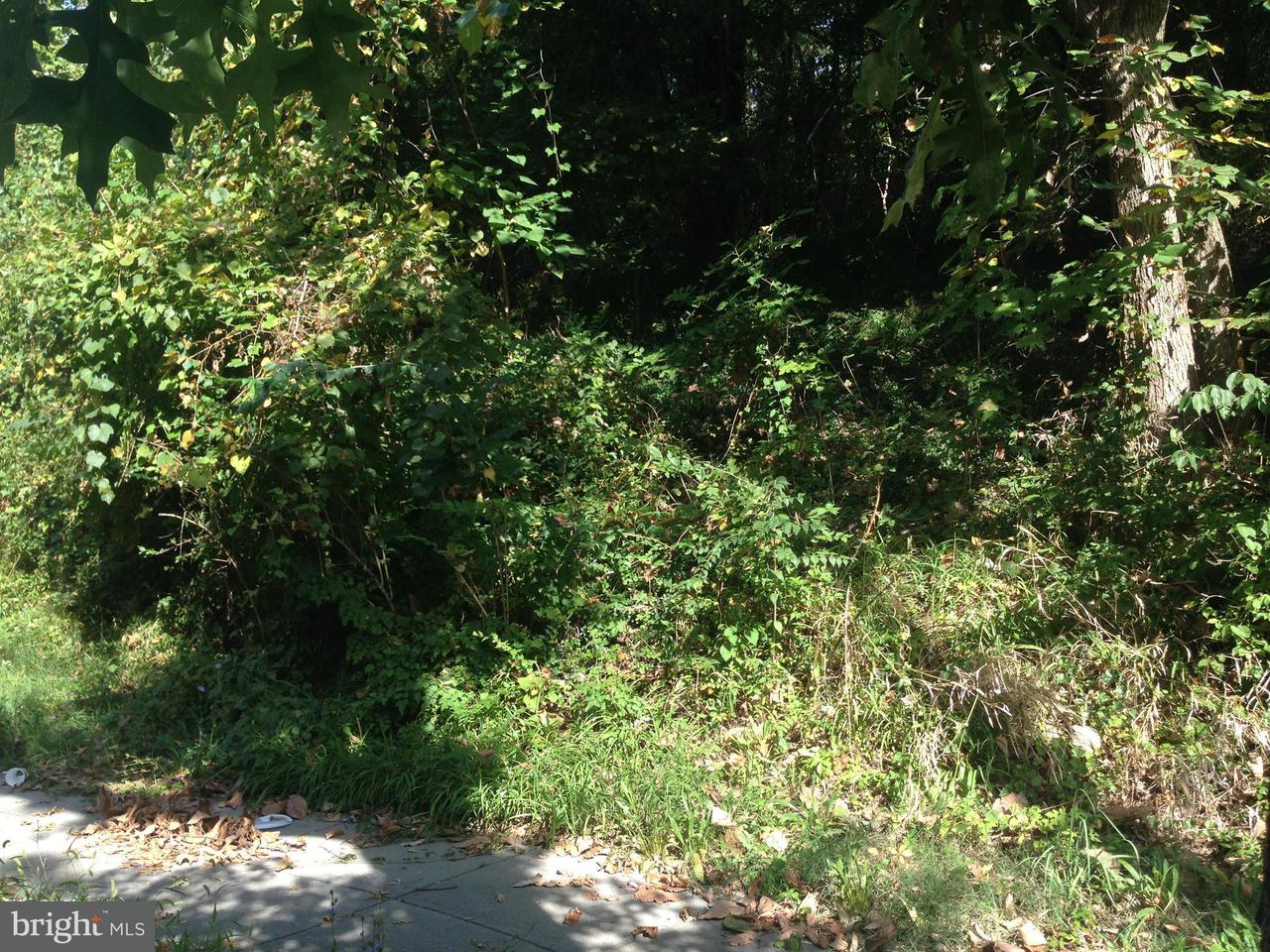 Land for Sale at 2549 Pomeroy Rd Se 2549 Pomeroy Rd Se Washington, District Of Columbia 20020 United States