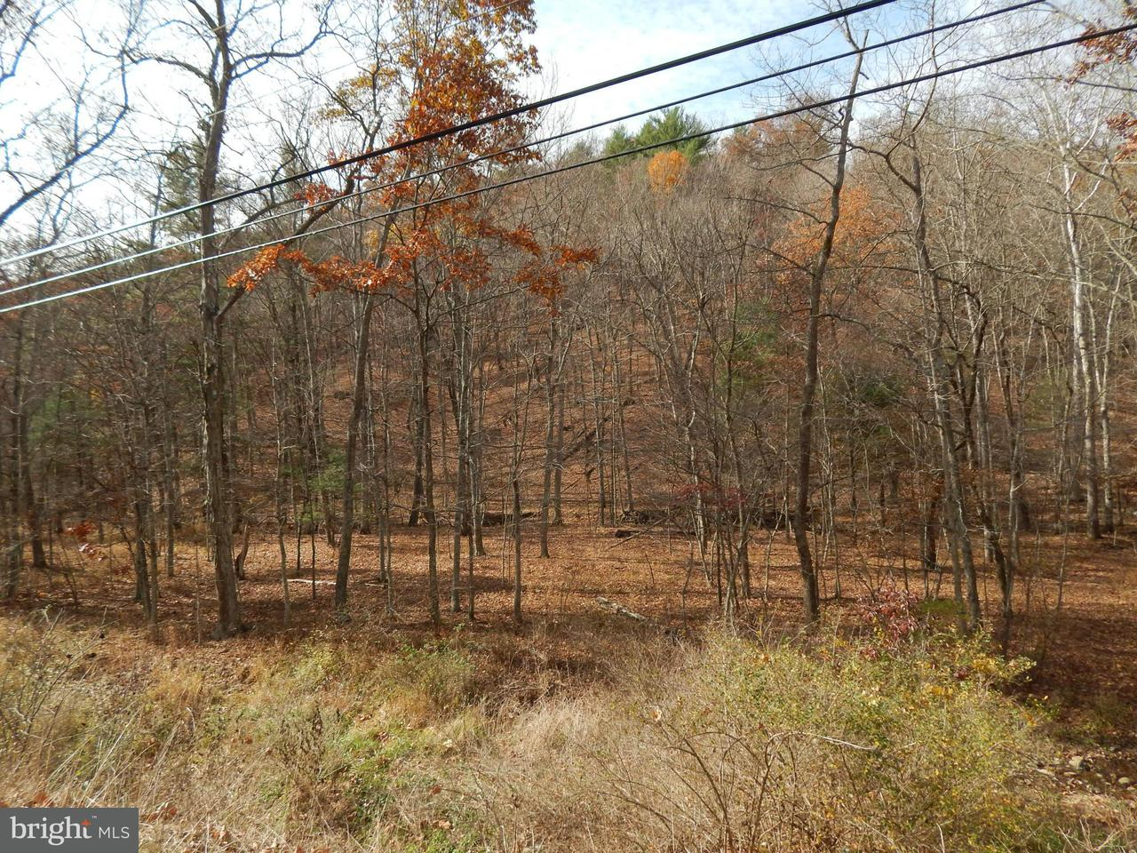 Additional photo for property listing at CACAPON ROAD CACAPON ROAD Great Cacapon, West Virginia 25422 Estados Unidos