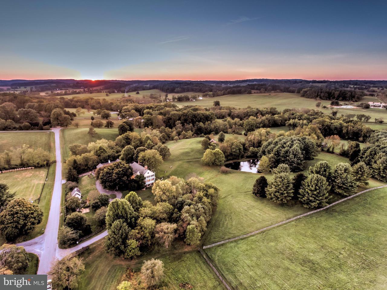 农场 为 销售 在 2310 GADD Road 2310 GADD Road 基斯维尔, 马里兰州 21030 美国