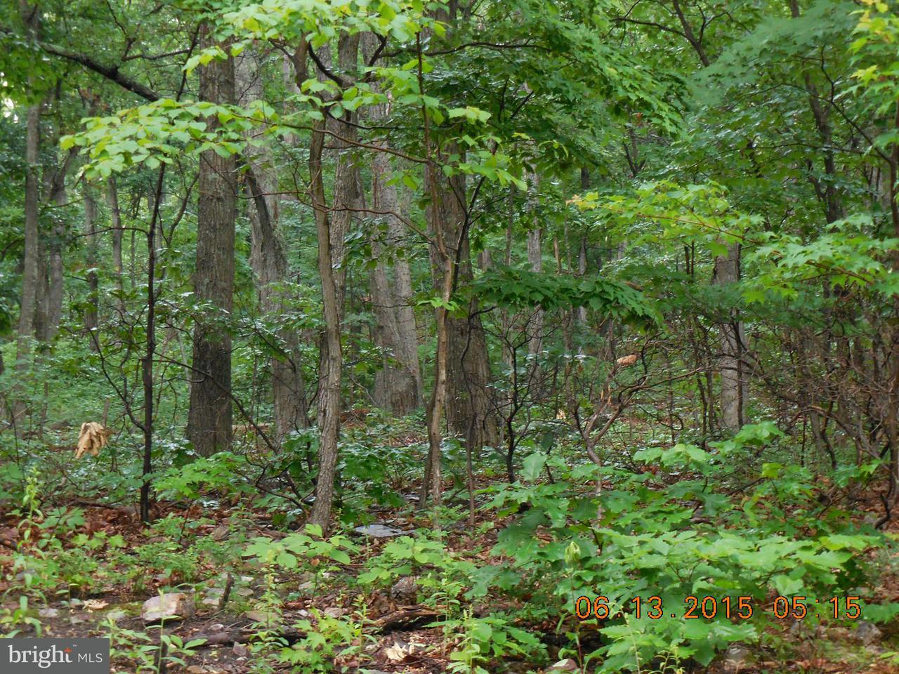 Land for Sale at Willow Trl Winchester, Virginia 22602 United States