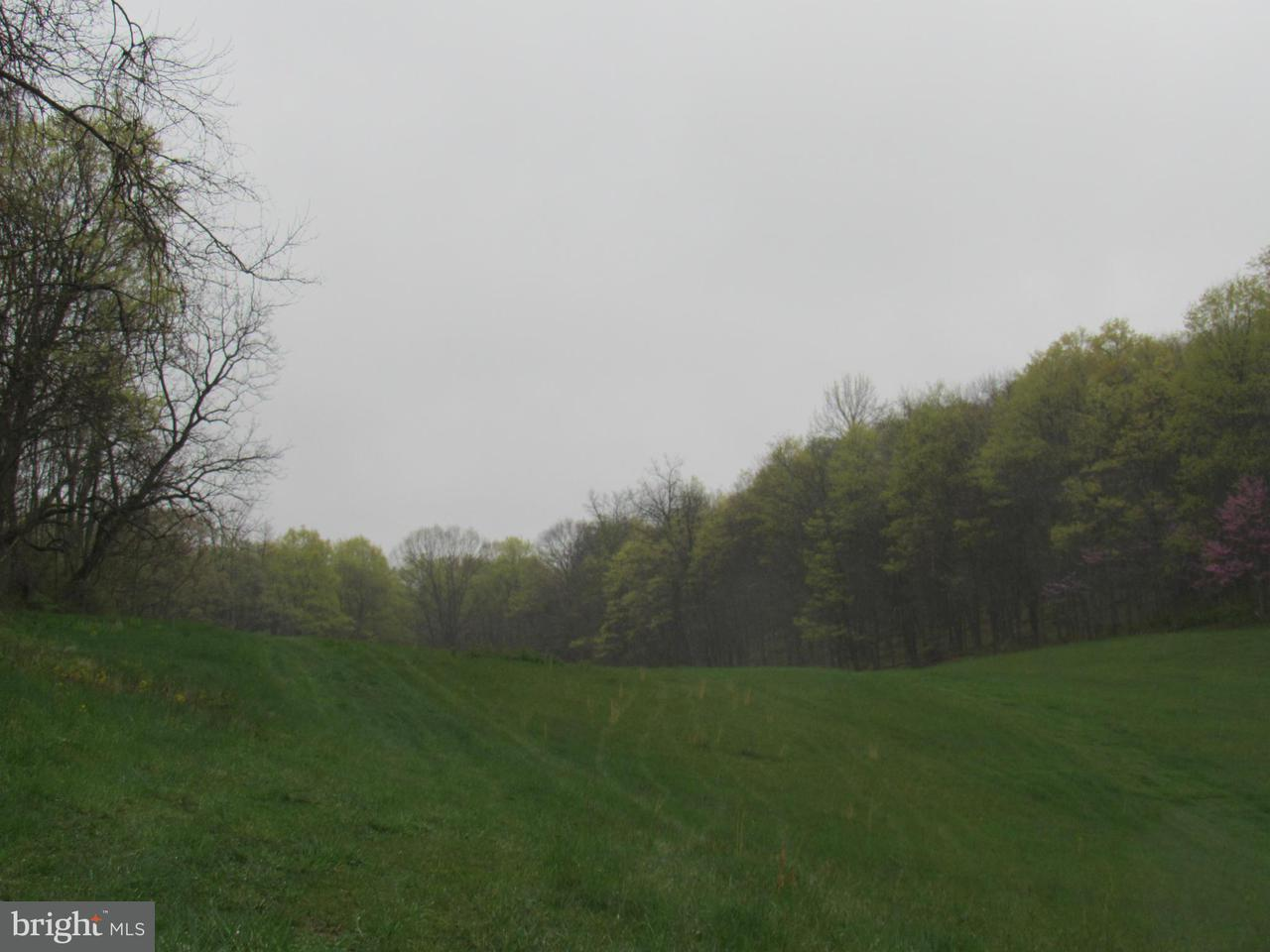Land for Sale at 12279 Majestic Valley Rd Cumberland, Maryland 21502 United States