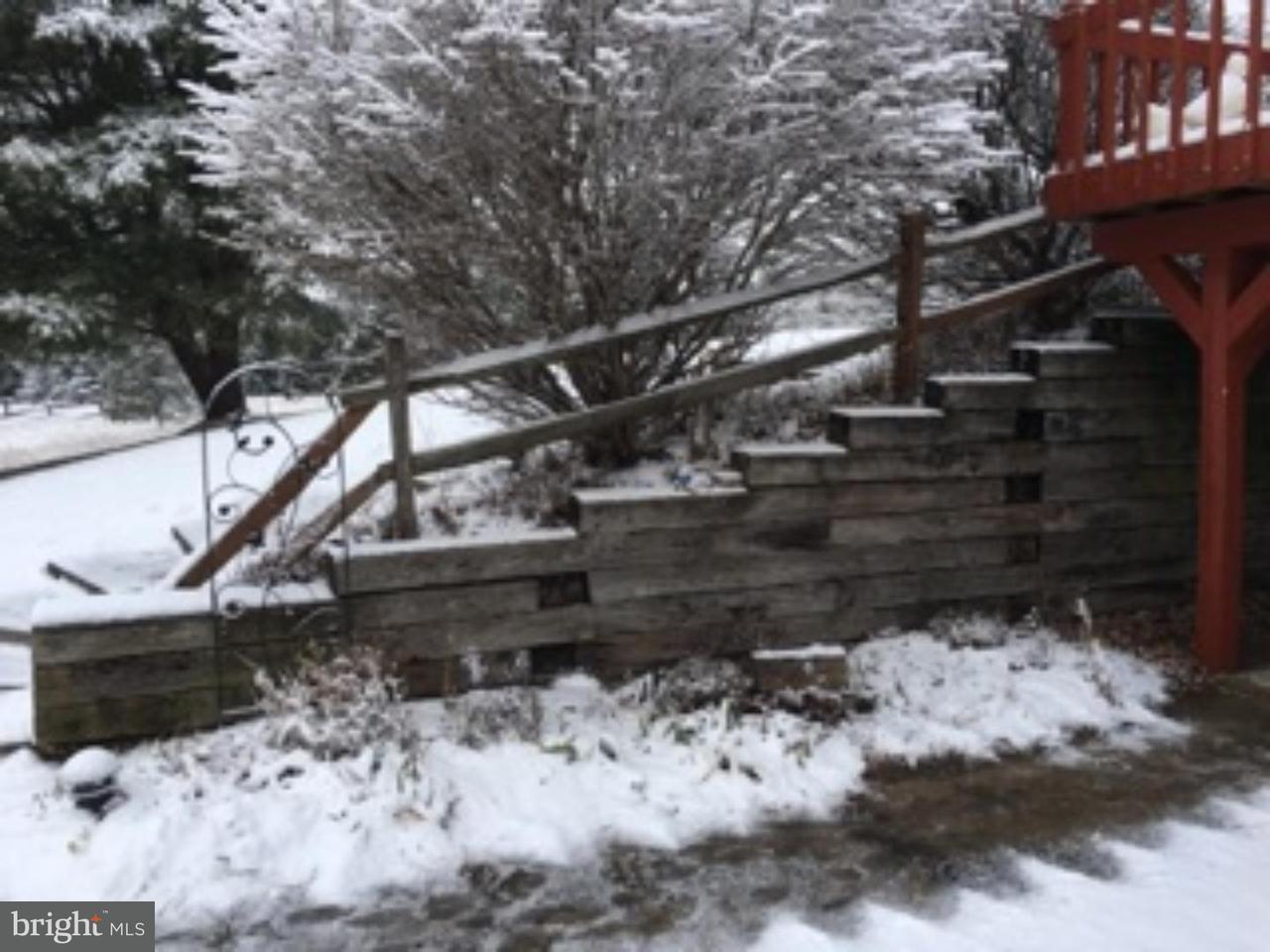 独户住宅 为 出租 在 82 UHLERSTOWN HILL Road Erwinna, 宾夕法尼亚州 18920 美国