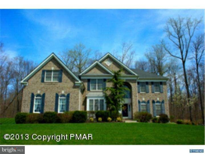 Single Family Home for Sale at 194 SADDLE CREEK Drive Mount Bethel, Pennsylvania 18343 United States