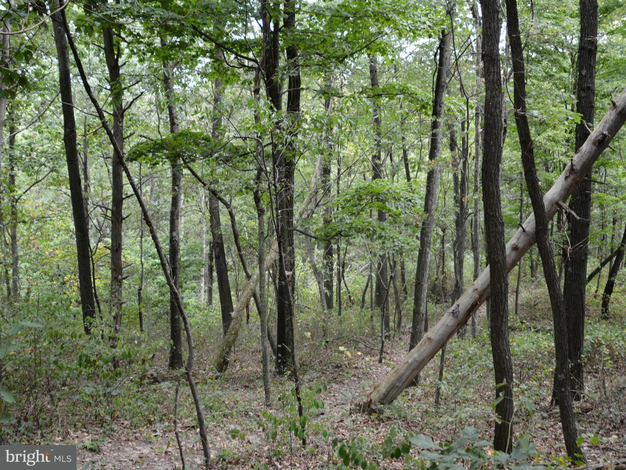 Land for Sale at Lot 14 Pine Ridge Road Clearville, Pennsylvania 15535 United States