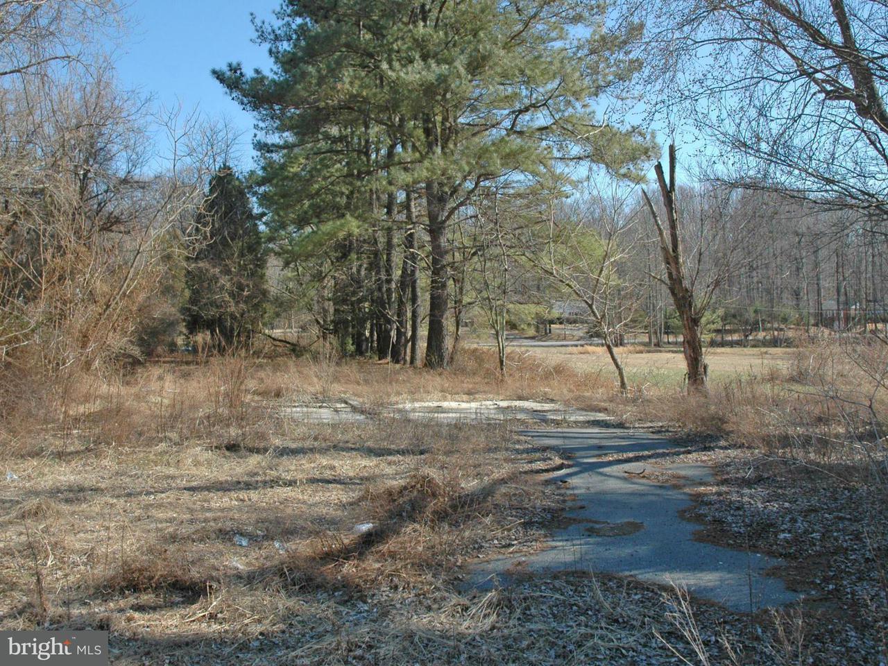 Additional photo for property listing at 244 Basil Ave  Chesapeake City, Maryland 21915 United States
