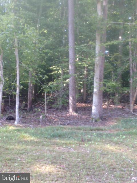 Land for Sale at 4794 Bog Turtle Ct Waldorf, Maryland 20601 United States