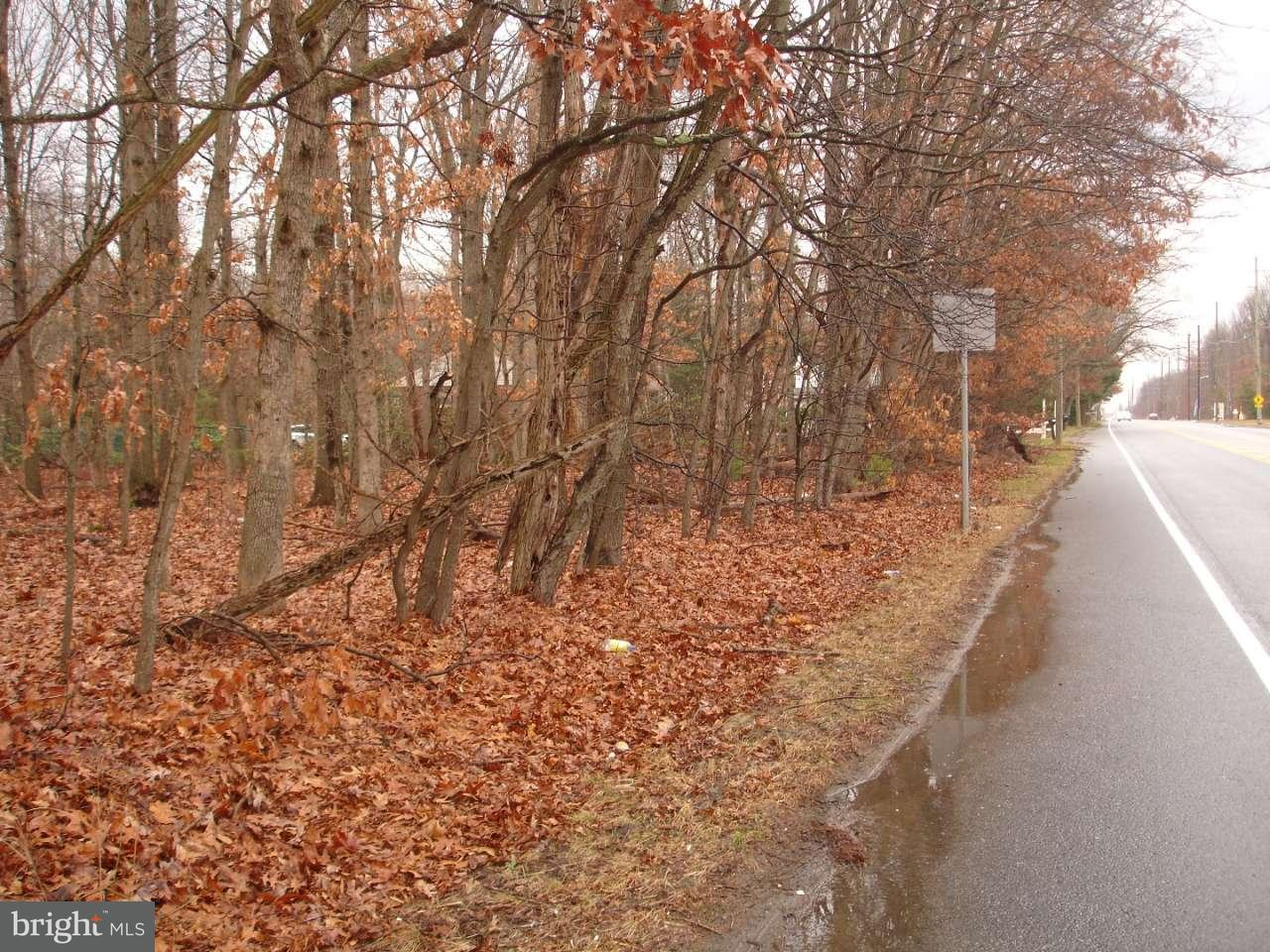 Additional photo for property listing at 2669 FRIES MILL Road  Williamstown, New Jersey 08094 États-Unis