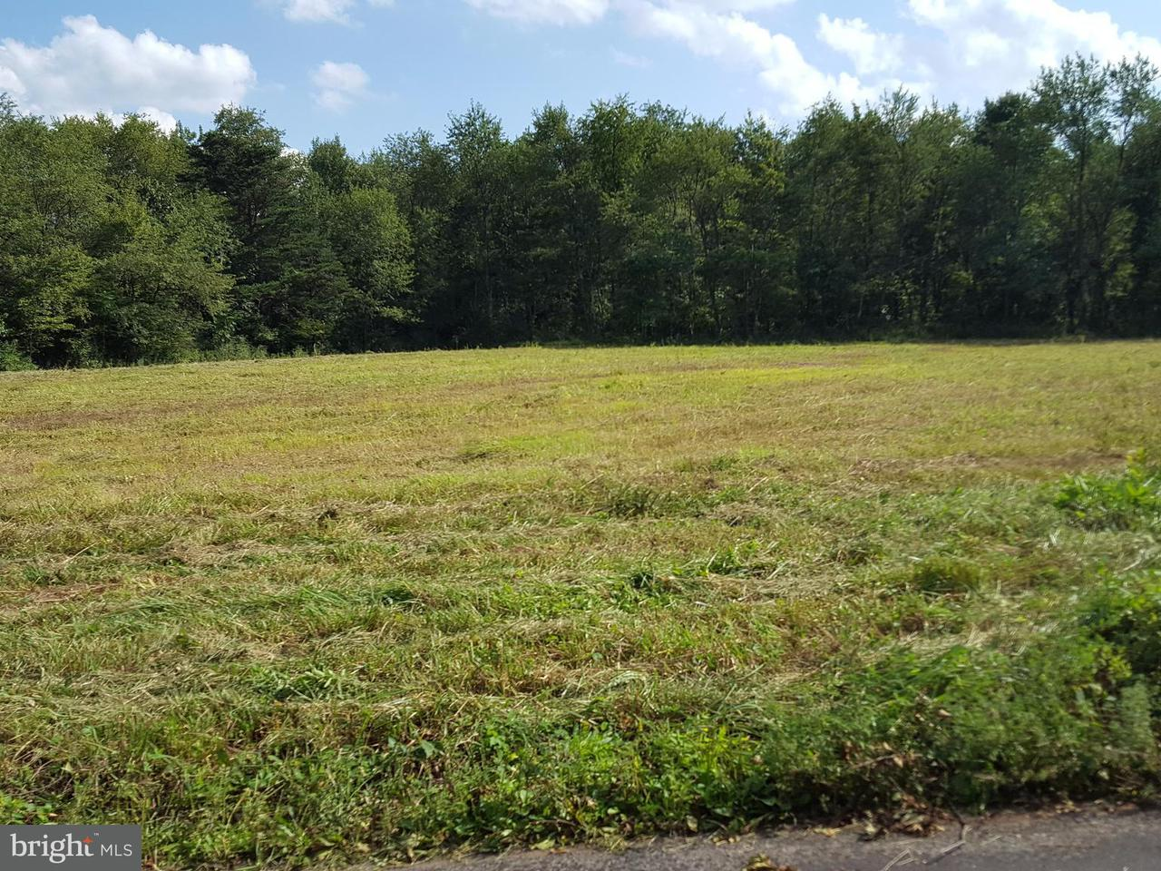 Land for Sale at Lot 3 Turkey Farm Rd NE Little Orleans, Maryland 21766 United States