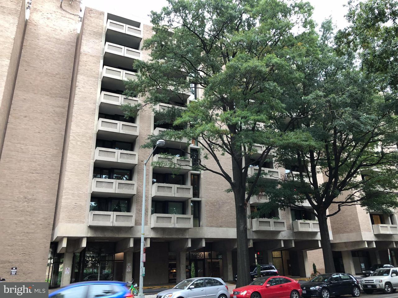 Condominium for Rent at 1250 4th St SW #w415 Washington, District Of Columbia 20024 United States